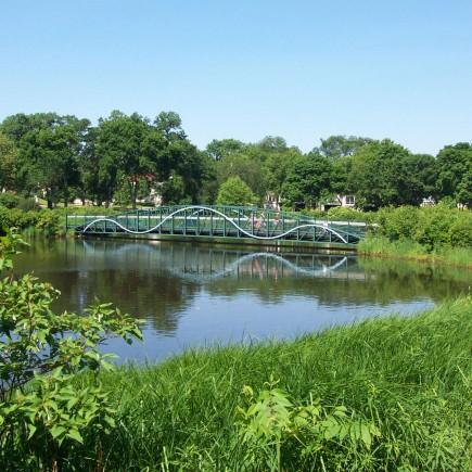 Lake Calhoun Wetland Ponds