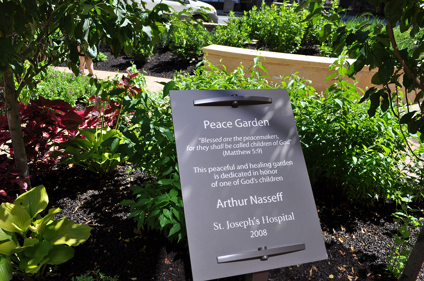 healing hospital Hospital gardens can have an impact on the health and wellbeing of patients, staff and visitors junior doctor nima ghadiri picks some of his favourites.