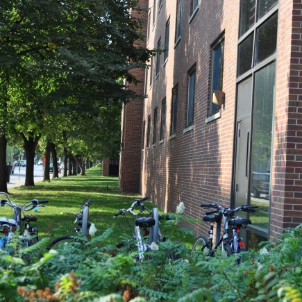 University of Minnesota | Territorial Hall - Bicycle Rack at Front Entrance